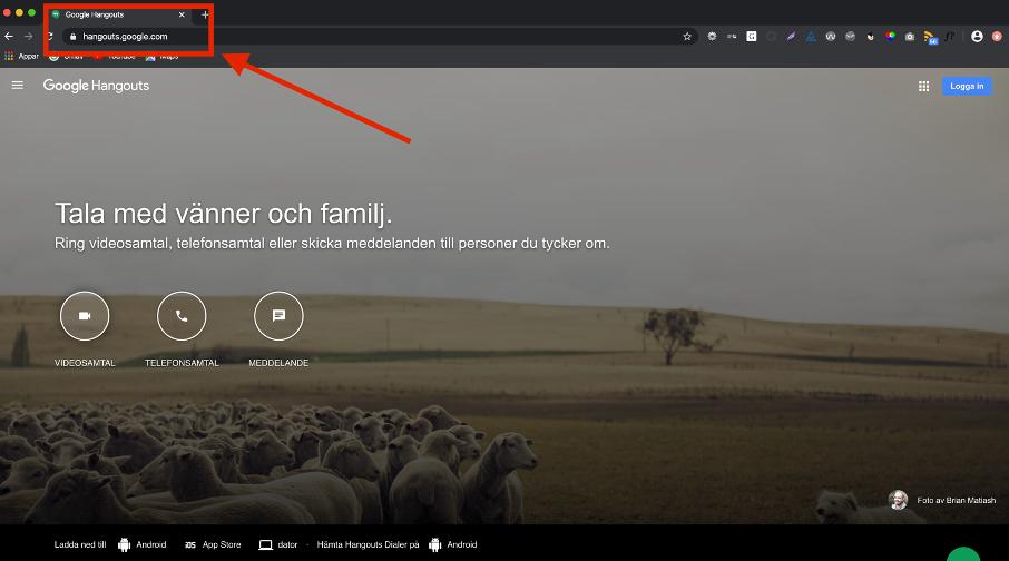 Visning av webbläsarfönster.